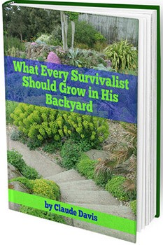 The Lost WaysReview – Does It Book Work Or Scam?